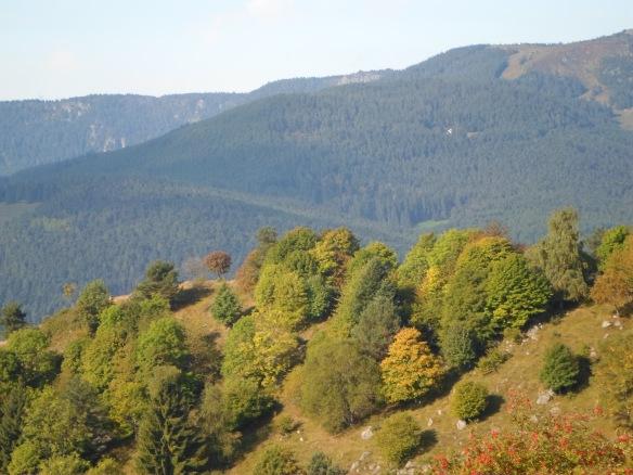 Ill-fated French ridge.jpg